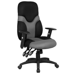 The adjustable ergonomic chair